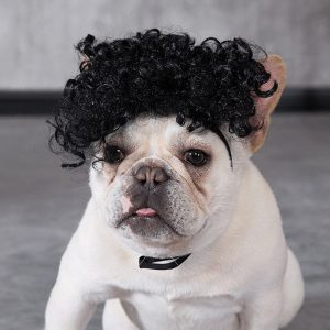 Wig Keriting Untuk Kucing/Anjing
