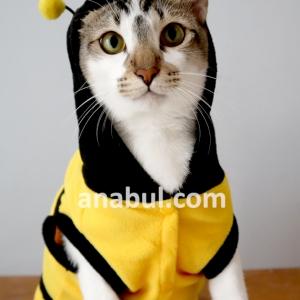 Kostum Cute Bee Untuk Kucing/Anjing