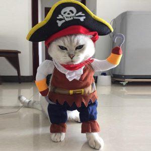 Kostum Kucing/Anjing Motif Bajak Laut (Pirates)